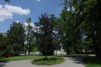 aarau-Rathausgarten5